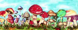 Magic Mushroom Garden
