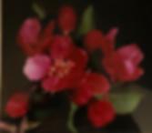 Tom Bennet Red Flower.png