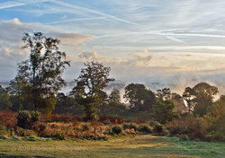 Brianseye Landscape (39)