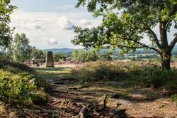 Brianseye Landscape (121)