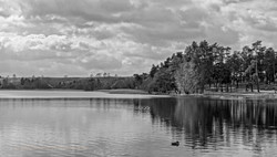 Brianseye Landscape (53)