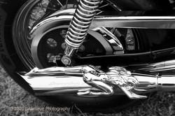 Biker Art 1
