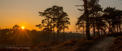 Brianseye Landscape (115)