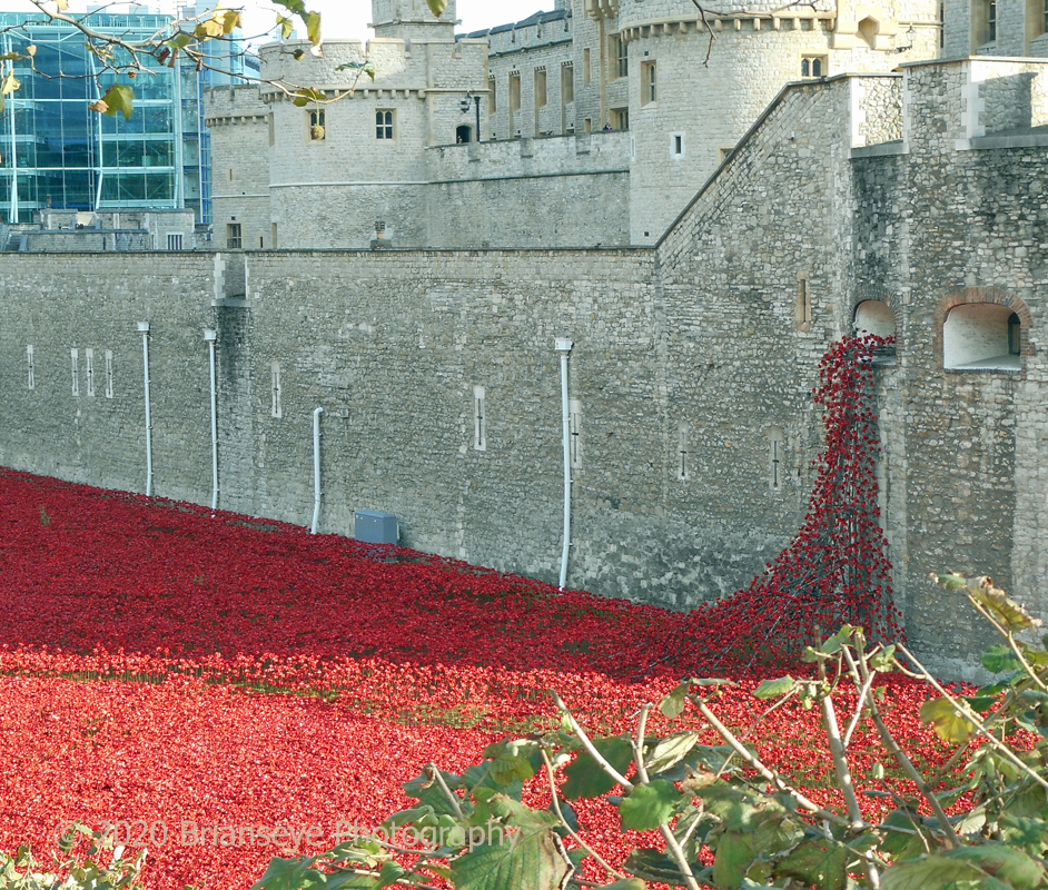 2014 - Tower of London
