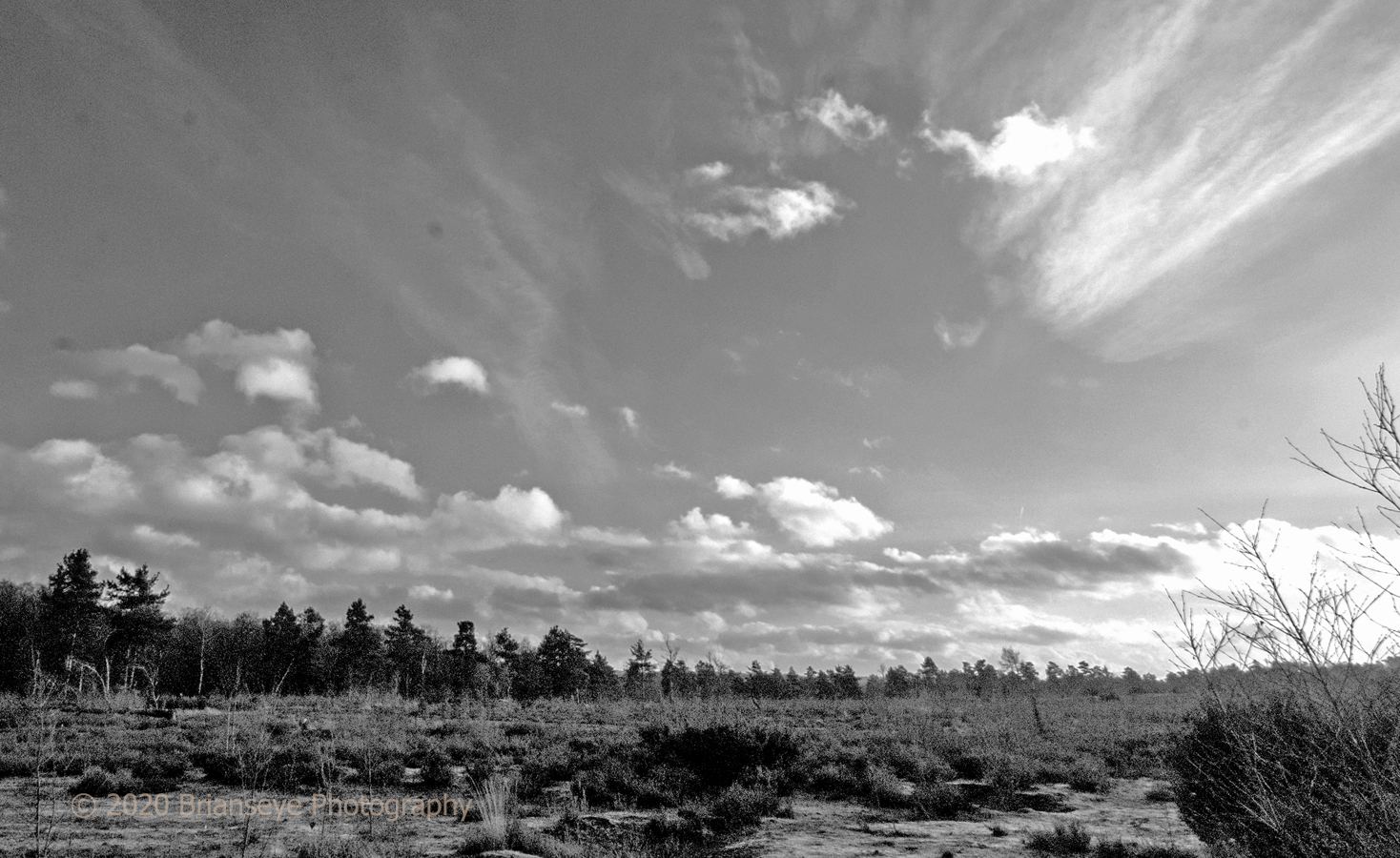 Brianseye Landscape (52)
