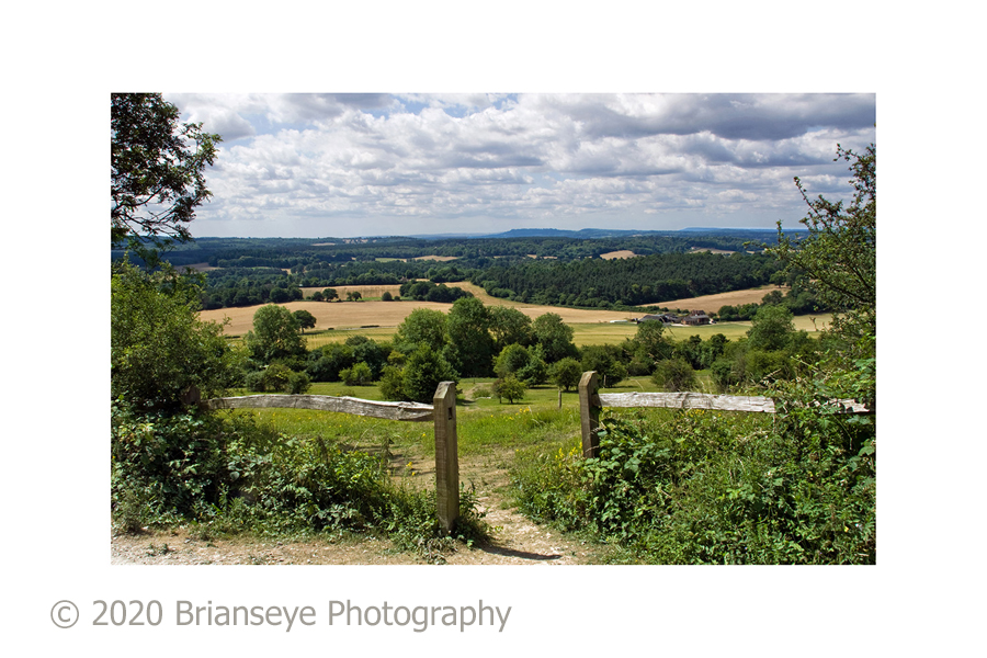 Newlands Corner - sm card lower res