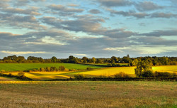 Brianseye Landscape (11)