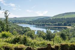 Dartmoor 2019