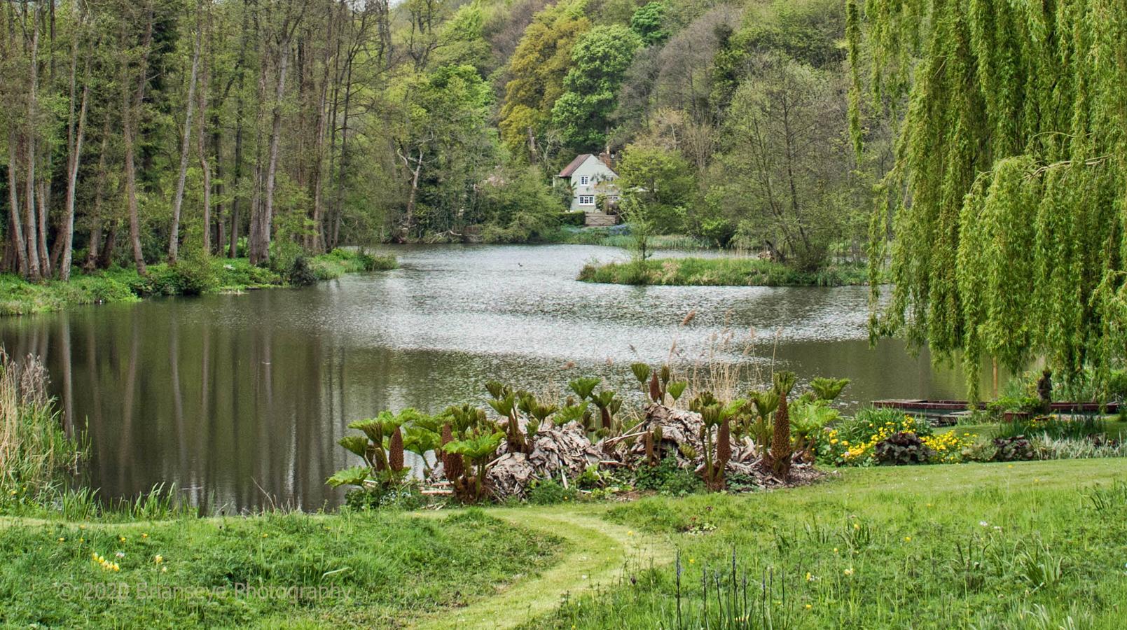 Brianseye Landscape (55)