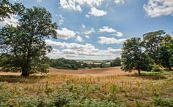 Brianseye Landscape (66)