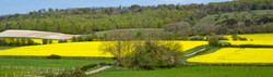 Brianseye Landscape (27)