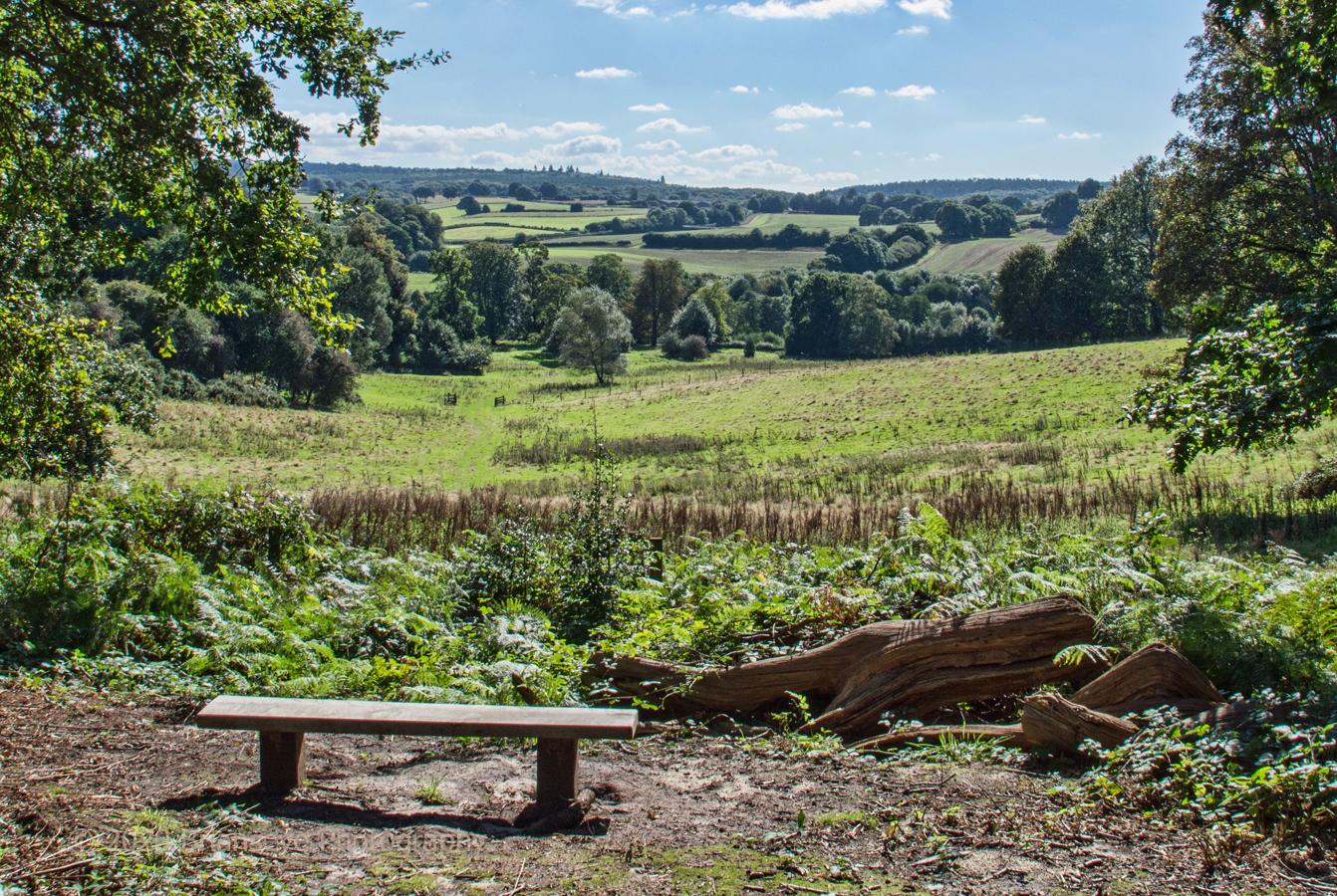 Brianseye Landscape (75)