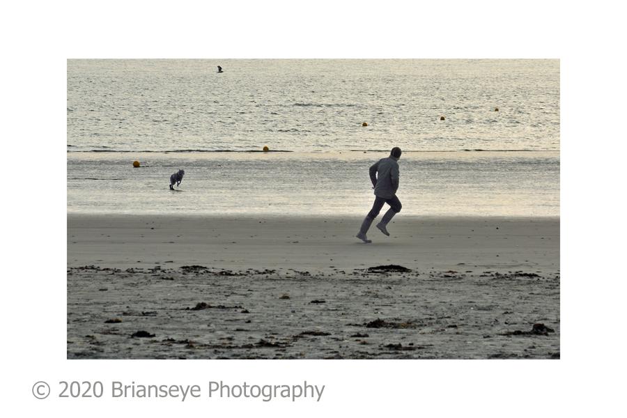 28. Dog walking at Wittering - card