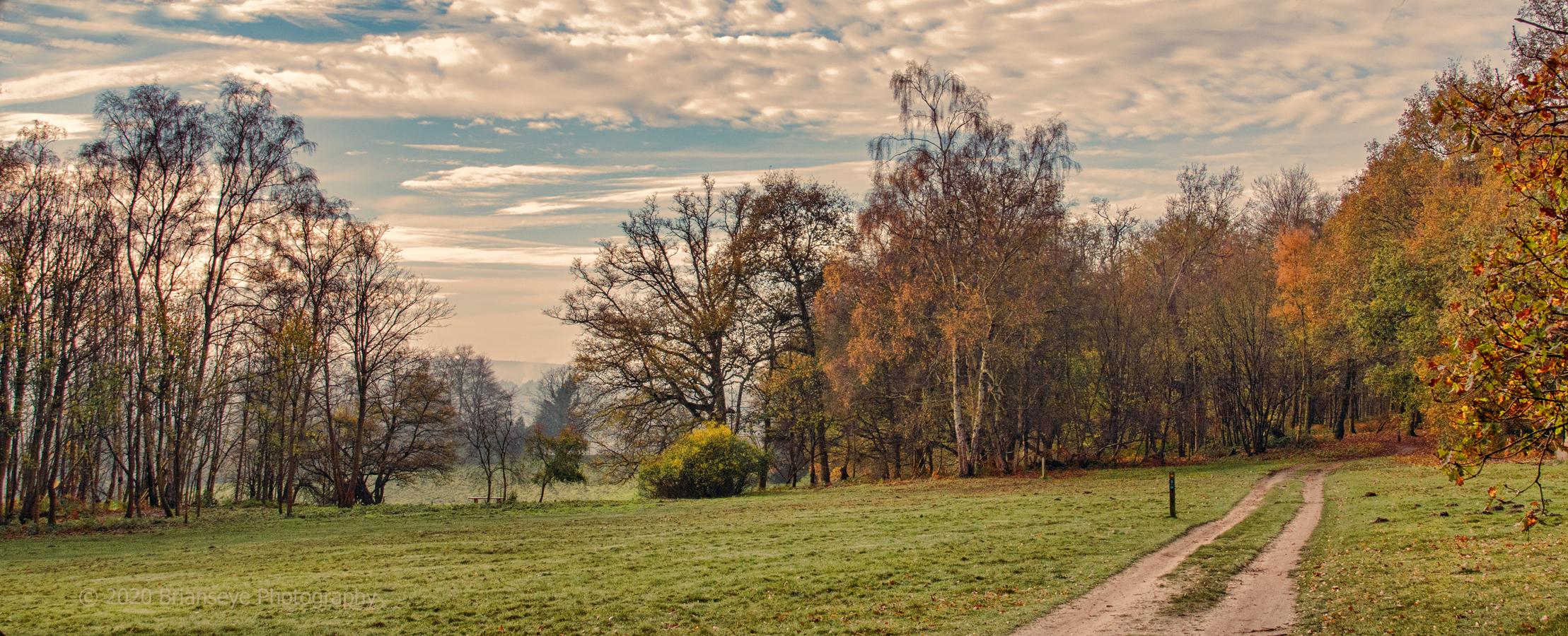 Brianseye Landscape (68)