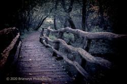 Dark Rickety bridge