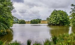 Brianseye Landscape (123)