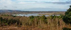 Brianseye Landscape (130)