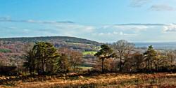 Brianseye Landscape (45)