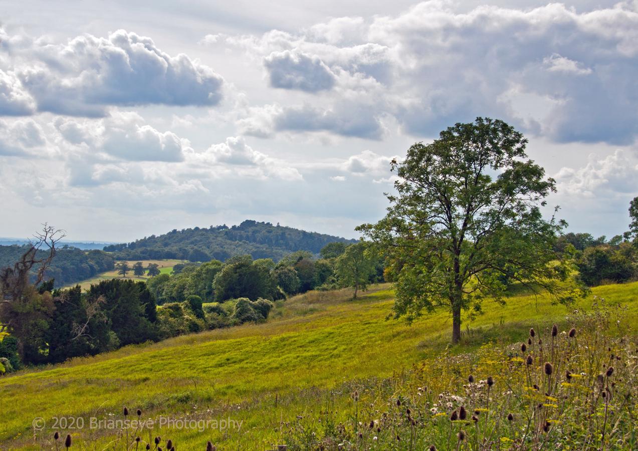 Brianseye Landscape (37)