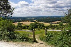 Brianseye Landscape (19)