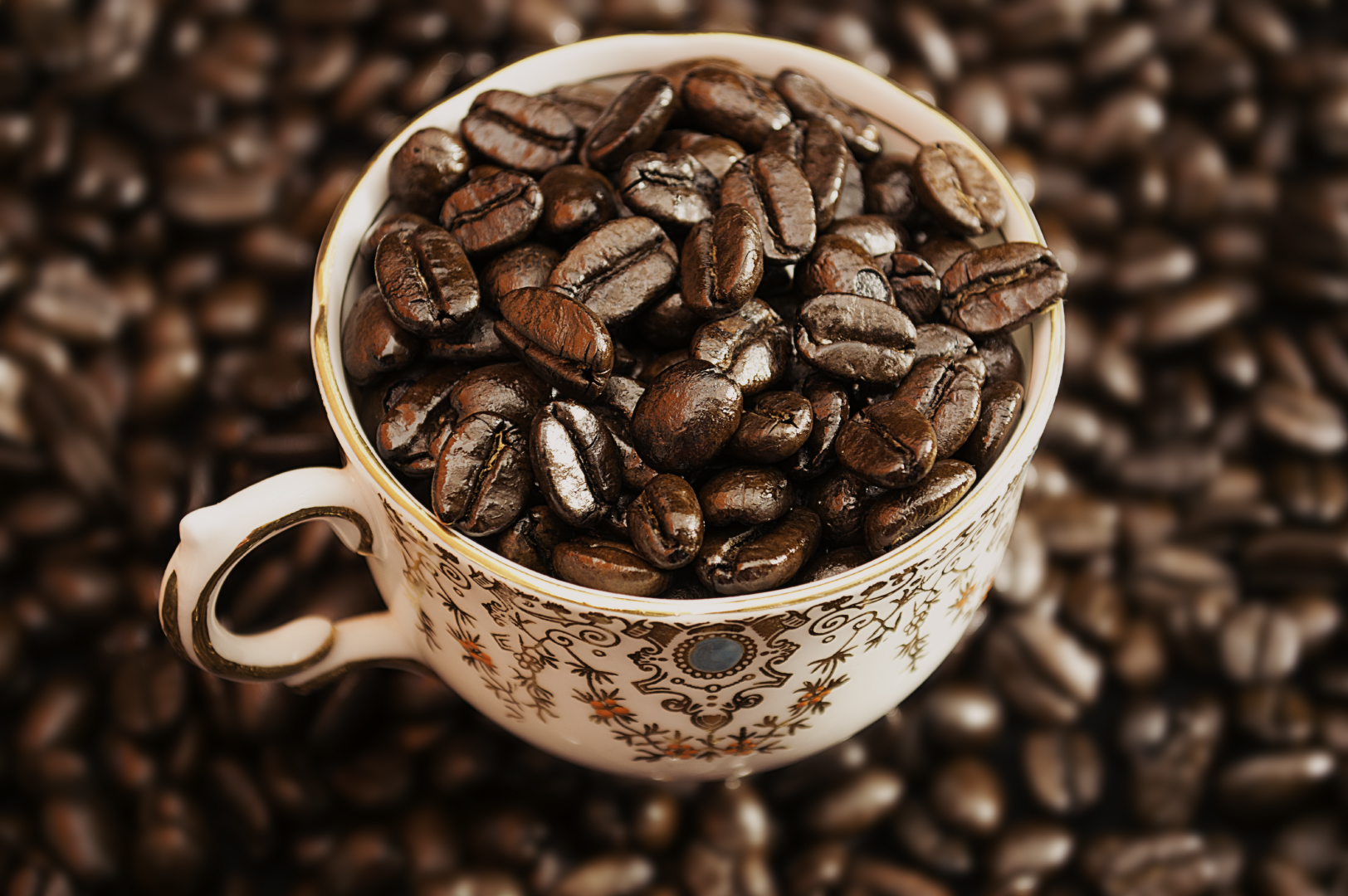 Coffee Trial-85.jpg