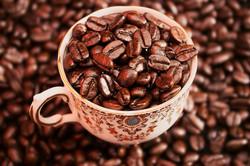 Coffee Trial-85.jpg