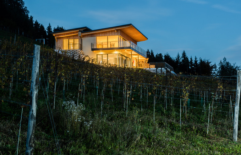 Längseeleit'n   Projekt von skape architects Stefan Kogler   Fotograf Ferdinand Neumueller .jpg