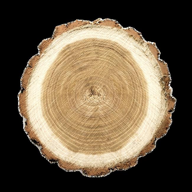 Warum Holz ?
