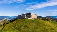 Burg Taggenbrunn Festspiele | skape architects .jpg