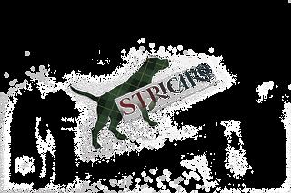 stricaro mock up2 -min_edited.png