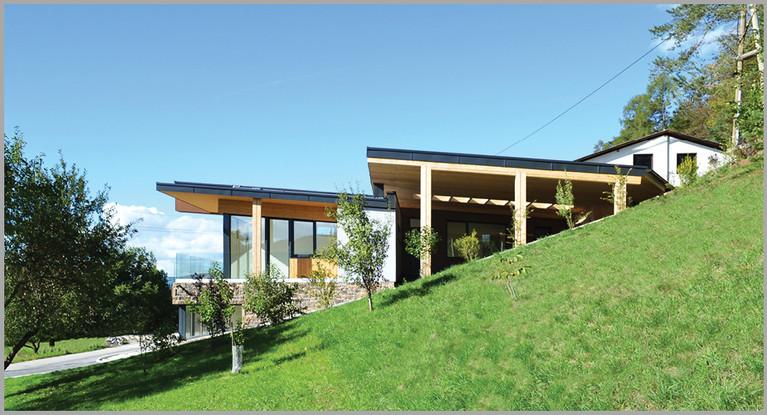 Haus am See   skape architects   Stefan Kogler .jpg