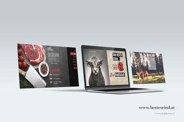 website showcase Biohof Unterer Moser.jpg