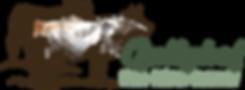gullyhof logo.png