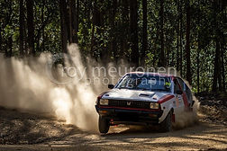 Forest rally pic.jpg