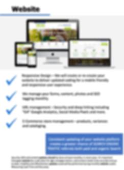 Website Management Mainivent.png