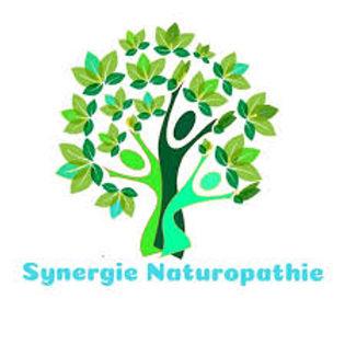 Logo SN2.jpg