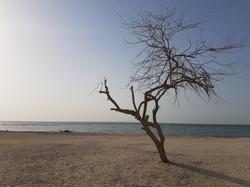 Al Zallaq Beach