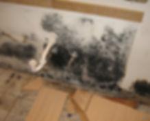 kitchen-under-sink.jpg