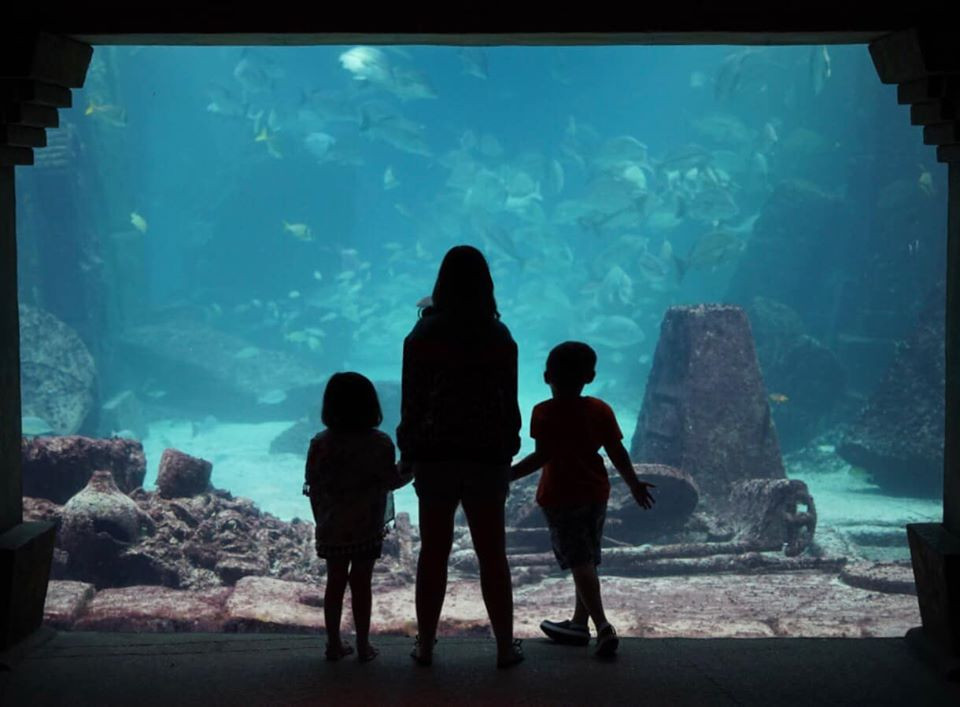Atlantis Aquarium with kids