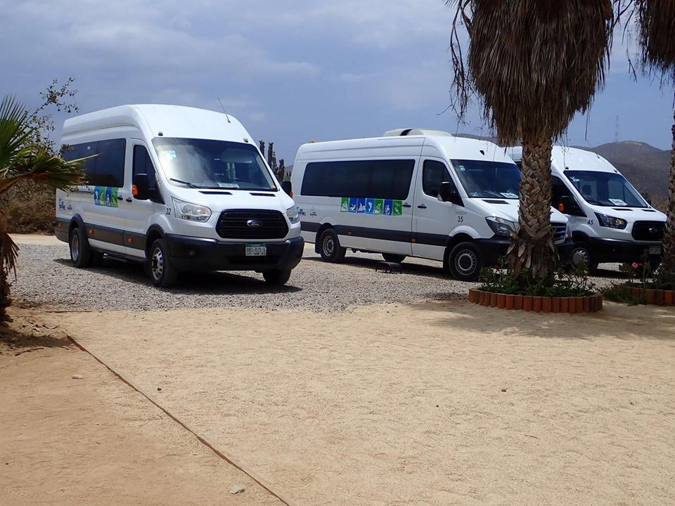 Cabo Adventures vans