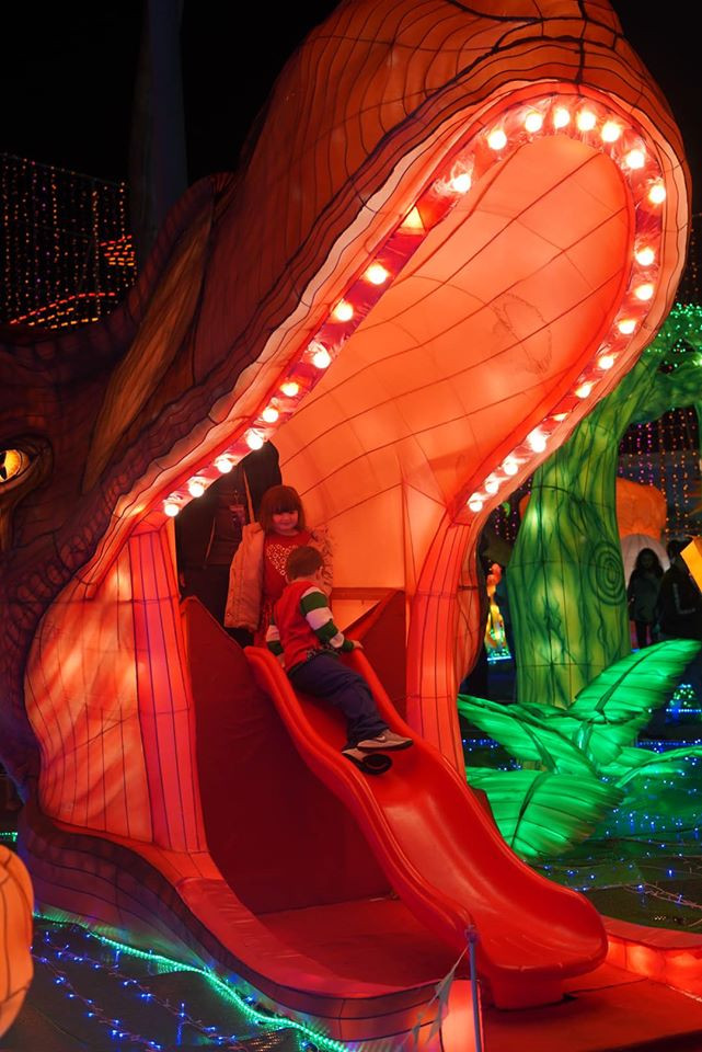 Dino Slide at Magical Winter Lights In Houston