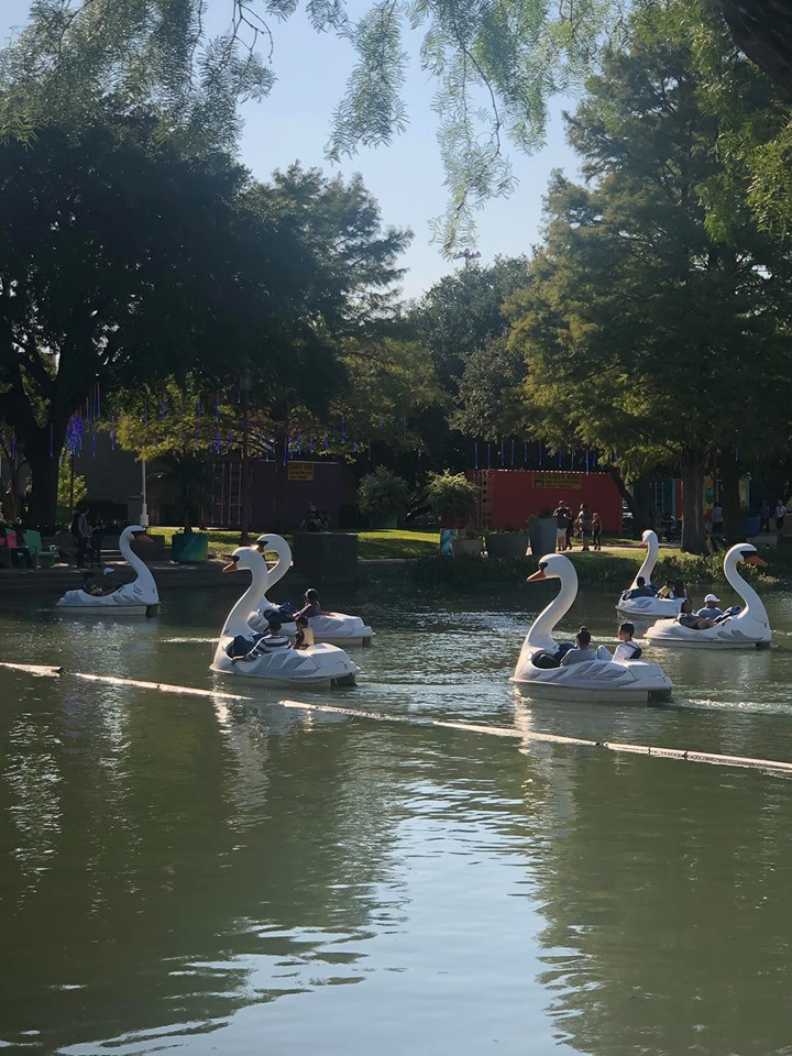 Swan Boats at Texas State Fair