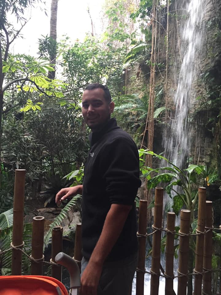 rain forest at Dallas World Aquarium