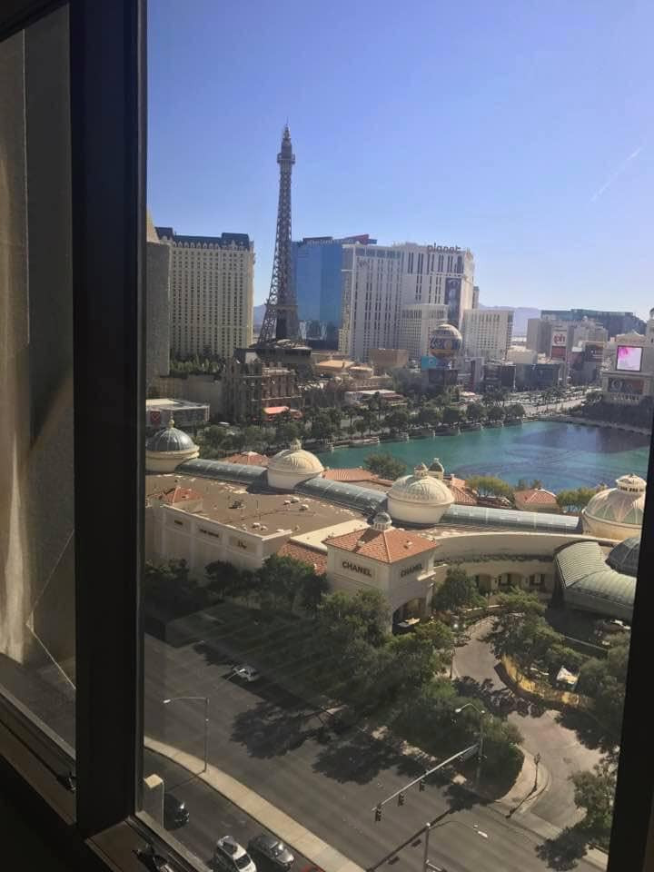 View Caesar's Palace Las Vegas- A Guide to Vegas