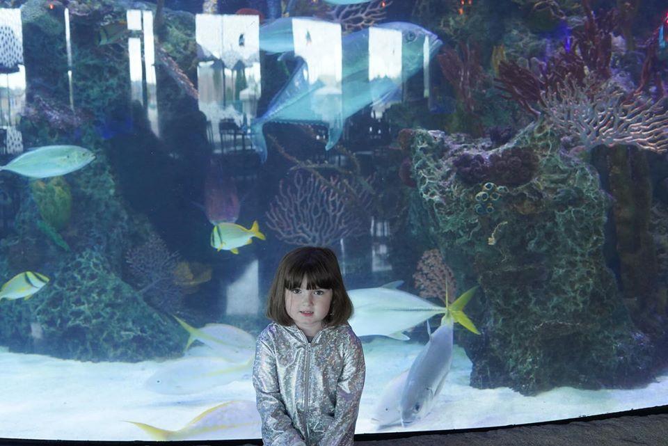 Harper at Aquarium