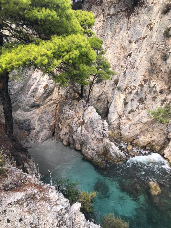 Three Pines in Skopelos Island