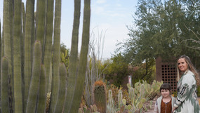 Desert Botanical Gardens in Arizona