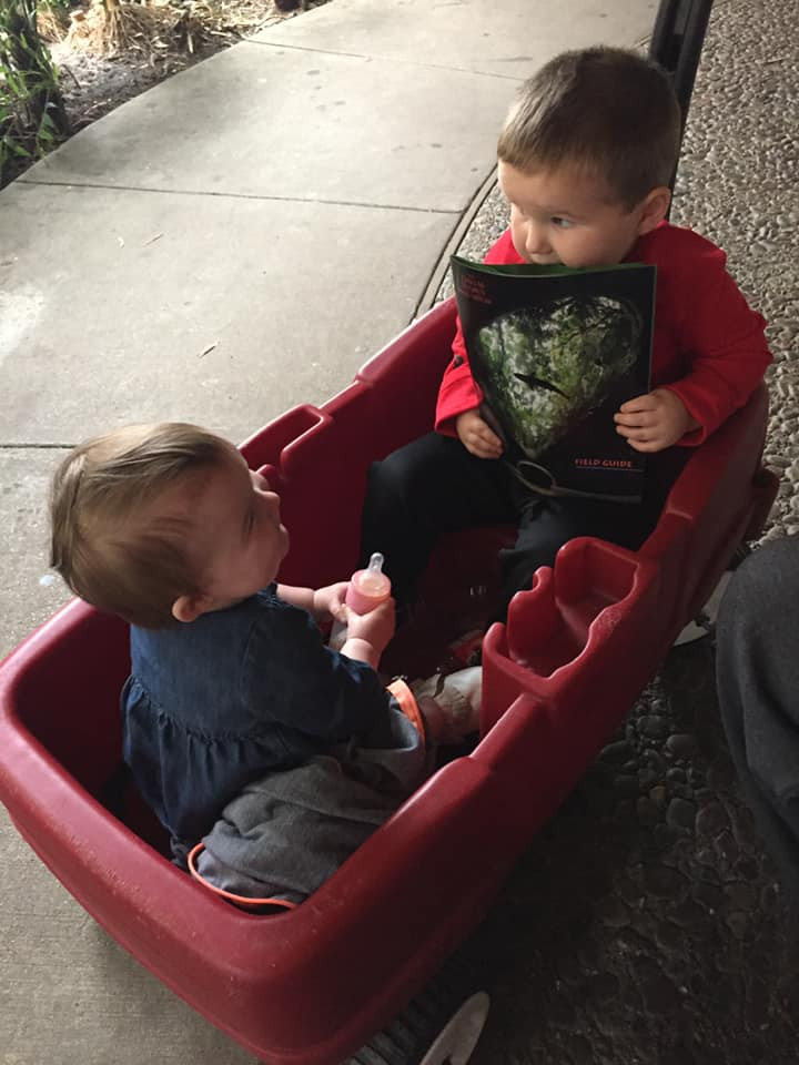 kids in wagon at Dallas World Aquarium