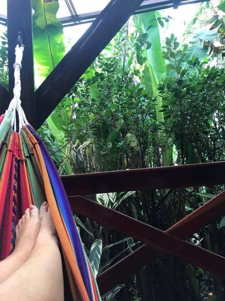 hammock at Nayara