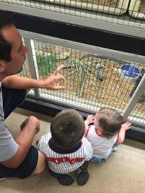 Animal World & Snake Farm